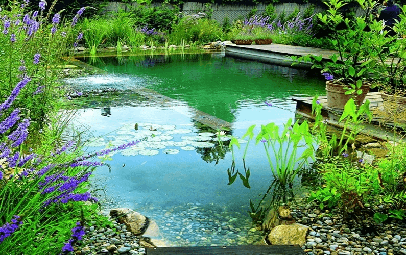 Eco Pools Video