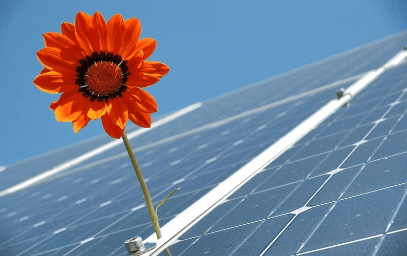 Going solar: How to use the sun to power your home