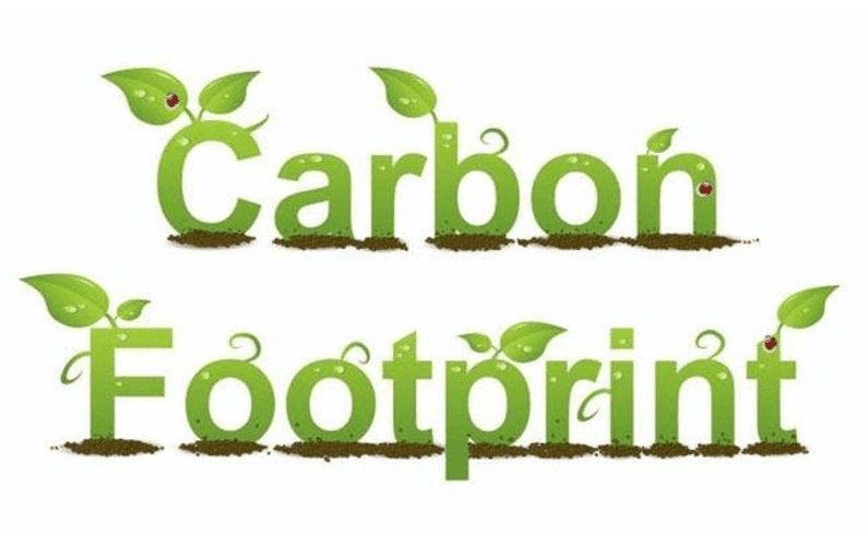 How to reduce your home's carbon footprint—and save money