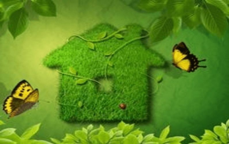 What makes a green smart home green?