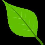 MeatOut 2020 Proclamation Leaf